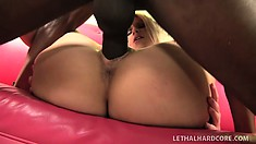 Sultry blonde hottie gets hammered hard by a large black cock