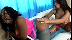 Naughty ebony lesbian likes working her girlfriend's pussy with a sex toy