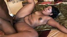 Voluptuous chocolate babe surrenders her wet peach to a huge black dick