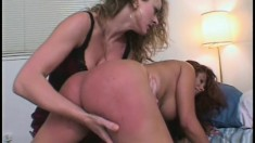 Sophisticated and easygoing red-haired bitch gets ass slapped